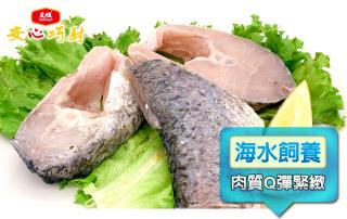 天然無毒龍虎斑輪切魚片