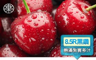 黑鑽加拿大LAPIN 8.5R 甜櫻桃(規格可選)