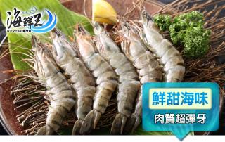 頂級嚴選鮮凍海草蝦