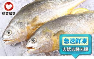 美味富貴黃魚