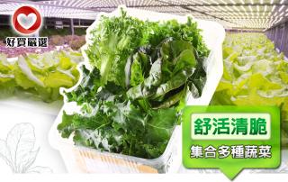 新鮮爽脆蔬果盒