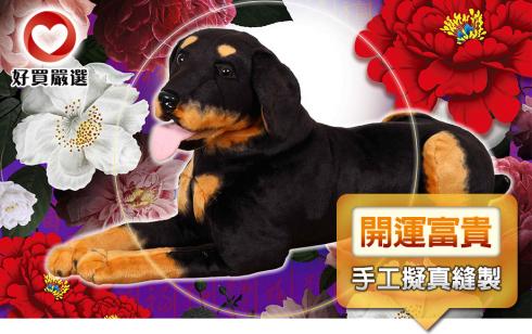 寵物開運大富貴黑色杜賓狗