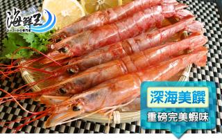 大尾阿根廷天使紅蝦
